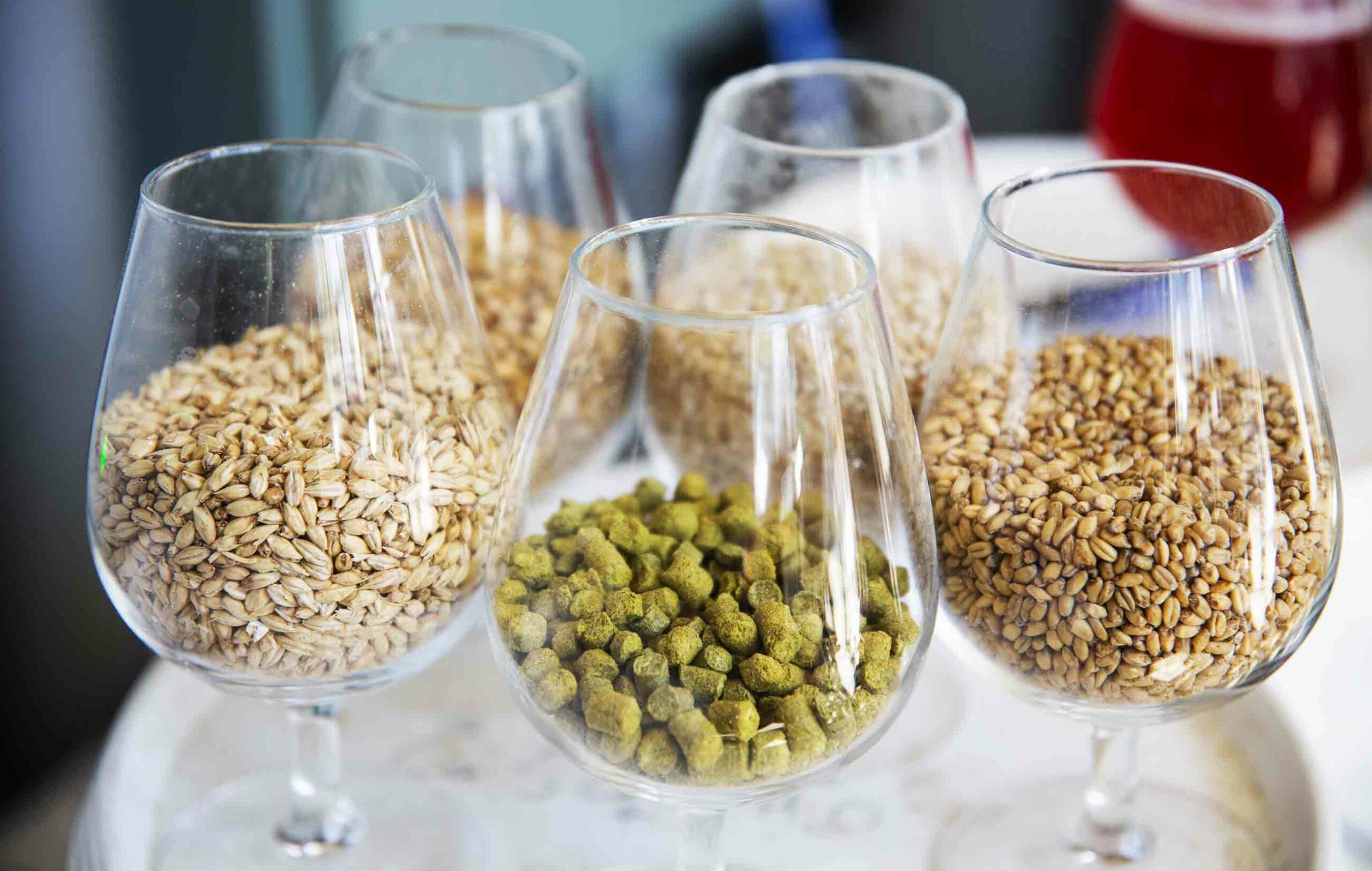 BeerlandApril-2021-0513-web